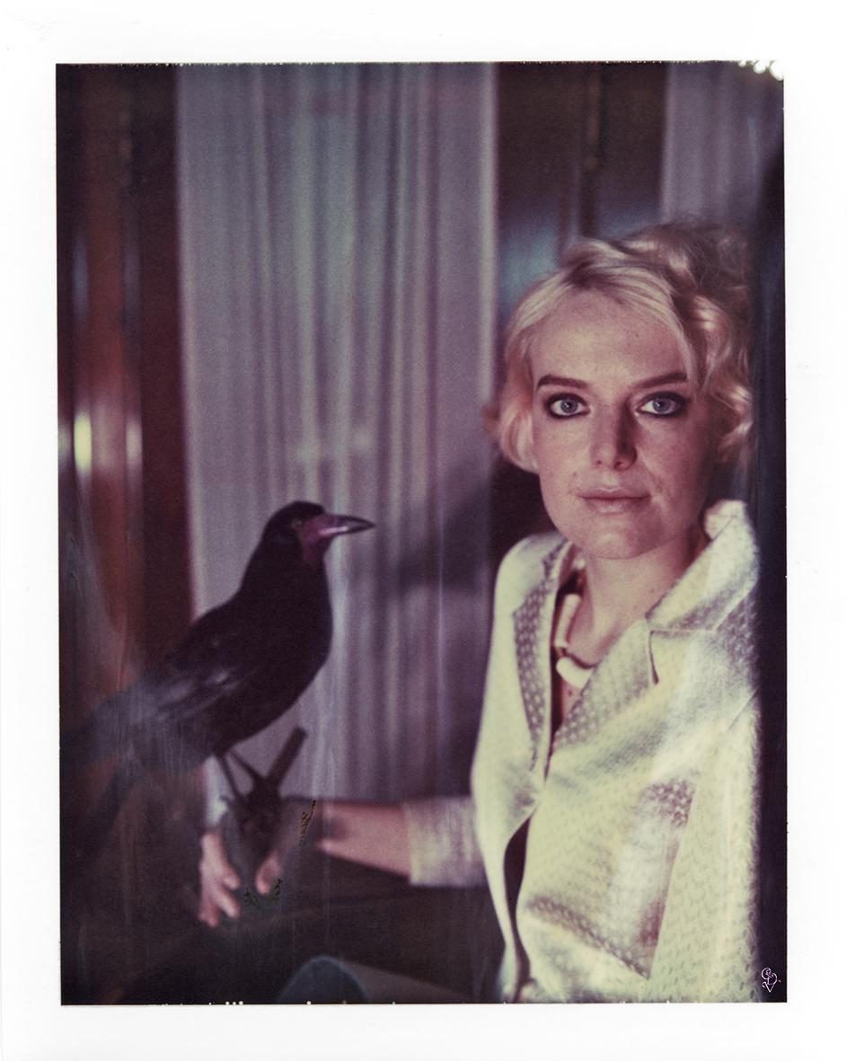 Hitchcock - Birds